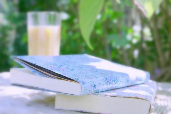 芦田愛菜おすすめ・夏休みにぴったりな本