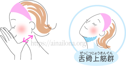 顔層筋マッサージ・舌骨上筋群