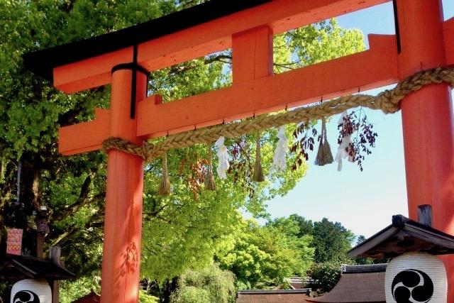 初詣におすすめの神社(戌年)